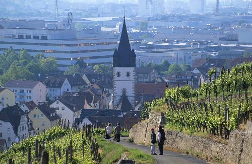 View over vineyards, Esslingen-Mettingen, Württemberg, Germany