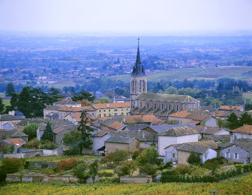 Fleurie, one of the ten Beaujolais Cru areas, France