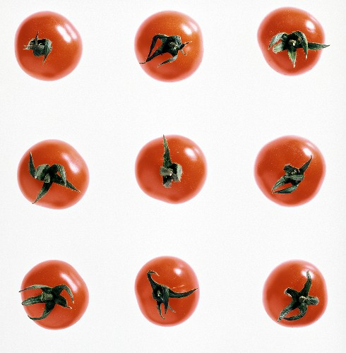 Nine tomatoes, arranged in a square