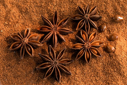 Star anise with seeds on ground star anise