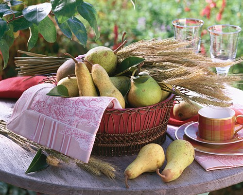 Autumn table decoration: pears and cereal ears in basket