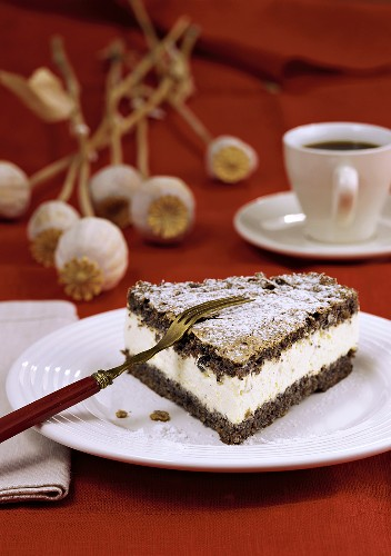 Piece of poppy seed cake with cream filling