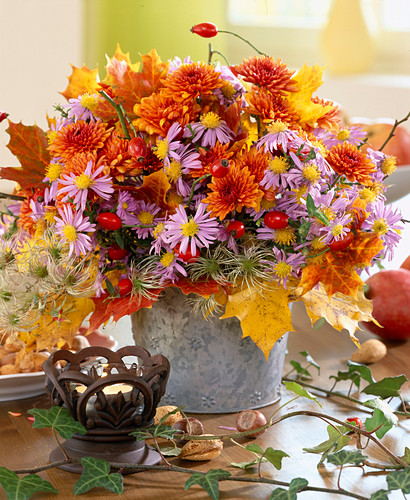 Chrysanthemums, Michaelmas daisies, clematis seed heads