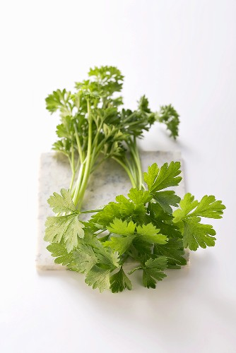 Fresh Organic Curly and Flat Leaf Parsley