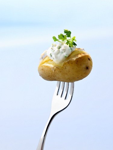 Potato cooked in its skin with herb quark on fork