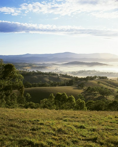 The Yarra Valley, Victoria, Australia