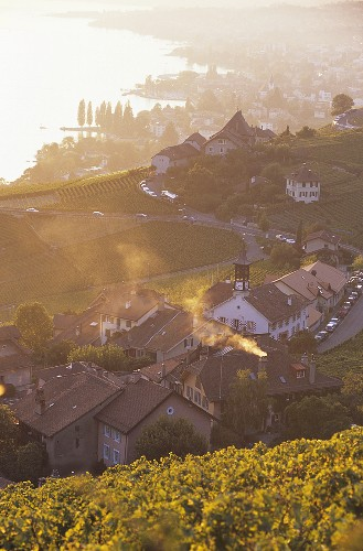 Aran, hamlet in Appellation Villette, Lavaux, Vaux, Switzerland