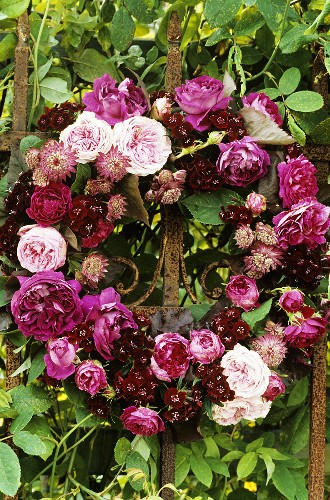 Flower wreath in shades of red: roses, astrantia & dianthus