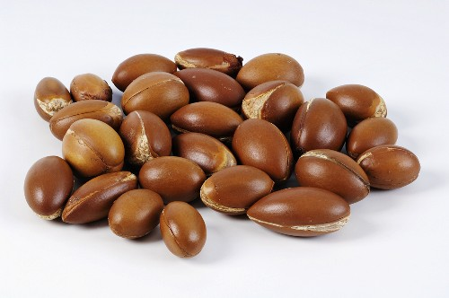 Fruit of the argan tree (source of valuable argan oil)