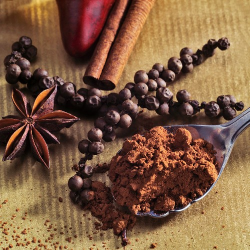 Cocoa powder and spices