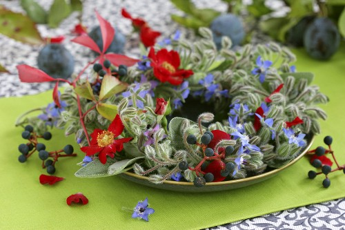 Wreath of borage, roses, vine leaves and plums