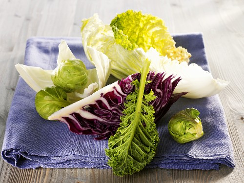 Pieces and leaves of various brassicas on a cloth