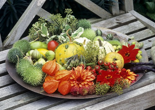 A dish of autumn fruits and flowers on a bench