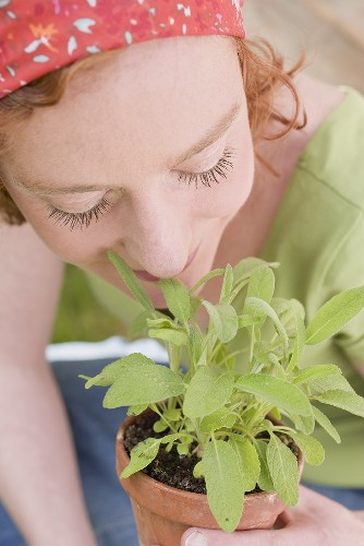 Young woman smelling sage