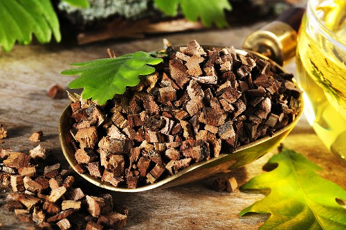 Chopped oak bark and tea