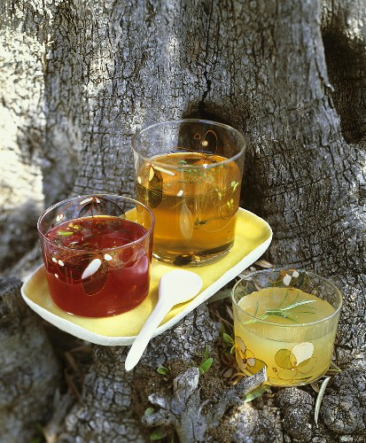 Blood orange jelly, apple jelly & pear jelly with rosemary