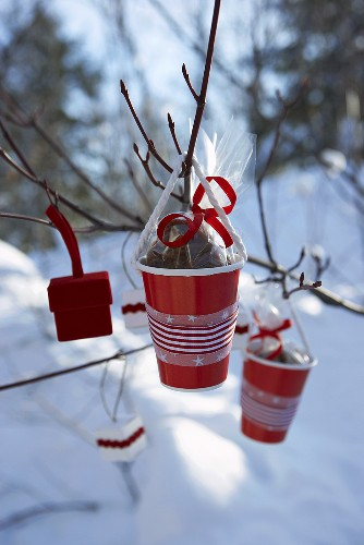 Red plastic cups containing pecan sweets hanging on branch