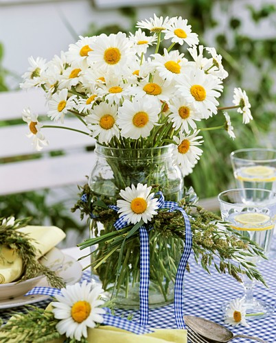 Oxeye daisies in jar with wreath of grasses
