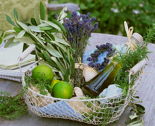 Basket of herbs, olive oil, limes & shells to give as a gift
