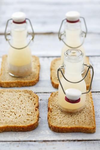 Sourdough starter in small bottles (for zurek) on wholemeal bread