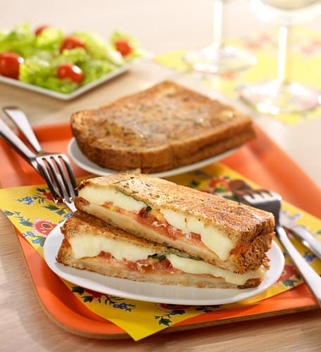 Tomato-mozzarella toasted sandwich