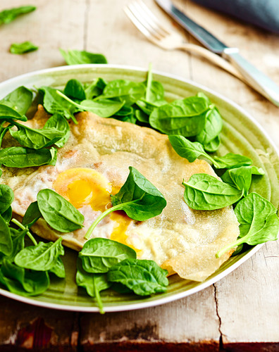 Egg Brick with fresh baby spinach