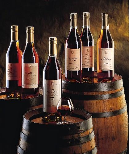 bottles of brandy and armagnac brandies