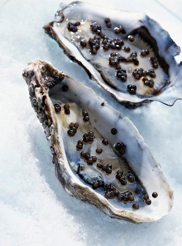 Austern mit Kaviargelee