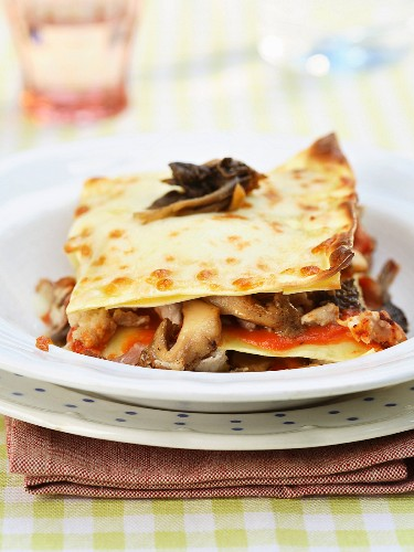 Chicken and forest mushroom lasagnes