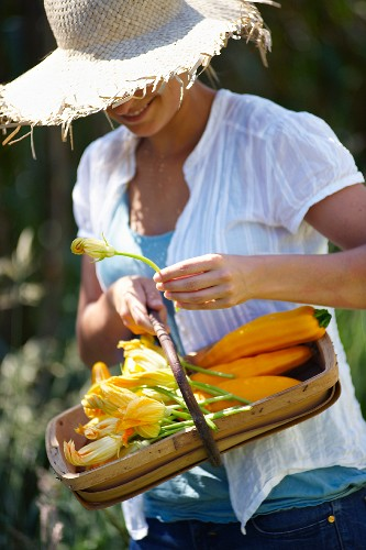 Person carrying a basket of zucchini flowers