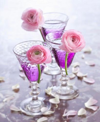 Violet cocktails