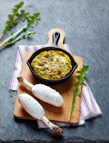 Shaggy Mane omelette