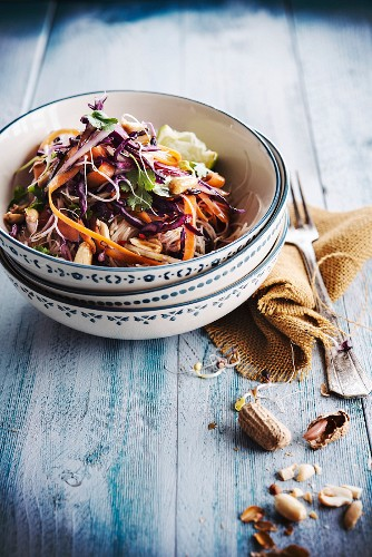 Rice noodle,red cabbage,carrot and peanut salad