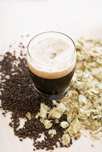 Imported Chocolate Malt Beer in a Mug, Grains and Hops