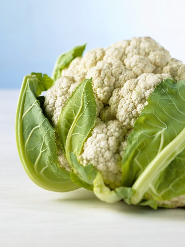 Fresh Head of Cauliflower