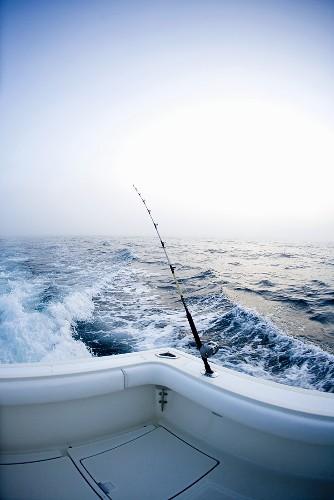 Deep Sea Fishing Pole on Back of Boat