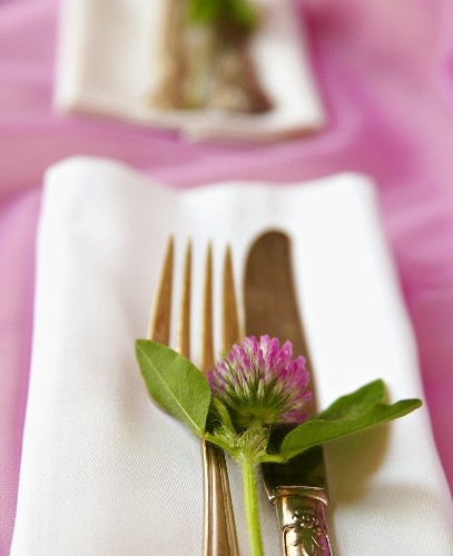 Place Setting with Clover
