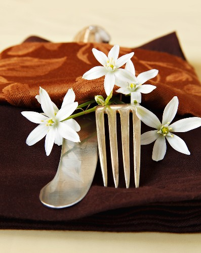 Place Setting with Brown Napkin and White Flowers