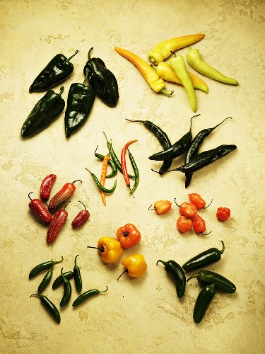 Variety of Fresh Mexican Peppers