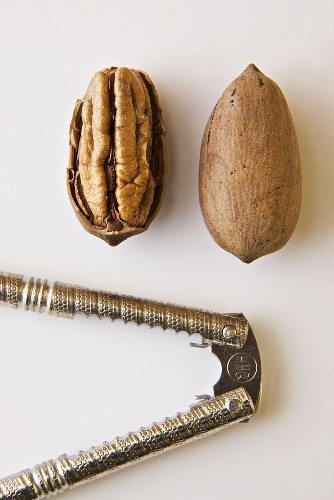 Cracked Pecan and Whole Pecan in Shell; Nut Cracker