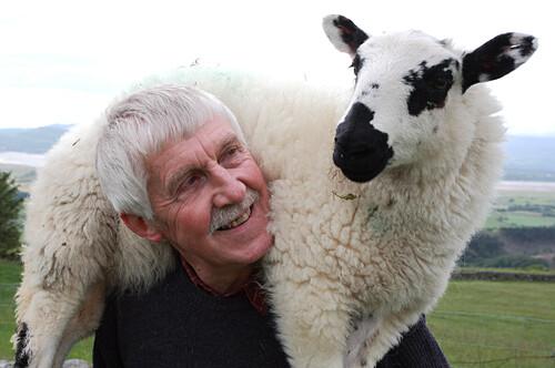 Caerwyn Roberts, sheep farmer nearby Harlech with a lamb, Merthyr Farm, North Wales, Great Britain, Europe