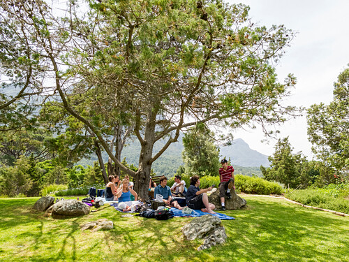 Groupe of people, picnic Botanics garden Kirstenbosch, Cape Town, South Africa
