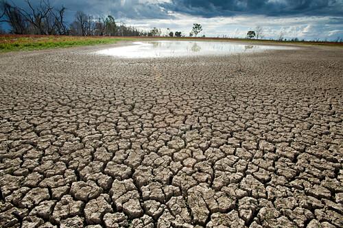 Ein fast ausgetrocknetes Wasserloch im semi-ariden Kinchega National Park, Kinchega NP, New South Wales, Australien