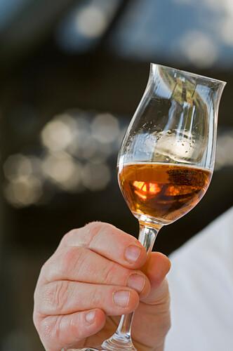 The Louise, Luxusherberge und Restaurant, ist bekannt für seine Weinauswahl, Barossa Valley, Südaustralien, Australien