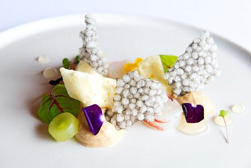 Champagner Crayfish, foi gras und Tapioka mit Kalamartinte, Hamilton Island, Queensland, Australien