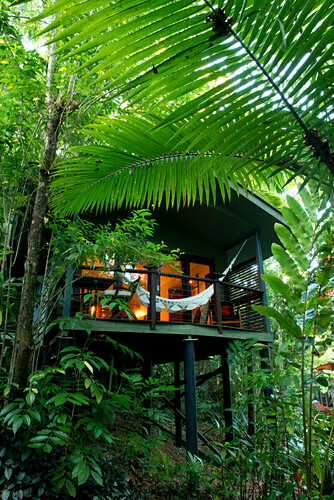 Die Villas der Lodge sind in Regenwald eingewachsen, Silky Oaks Lodge, Queensland, Australien
