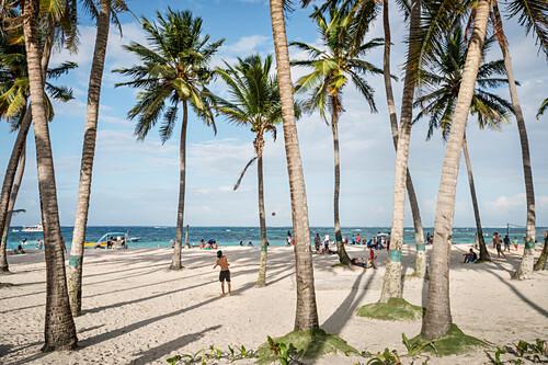 Palmen Allee am Stadtstrand von San Andres, Departamento San Andrés und Providencia, Kolumbien, Karibik, Südamerika
