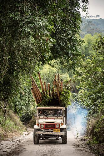 Toyota Geländewagen beladen mit Bambus, Hacienda Venecia bei Manizales, UNESCO Welterbe Kaffee Dreieck (Zona Cafatera), Departmento Caldas, Kolumbien, Südamerika