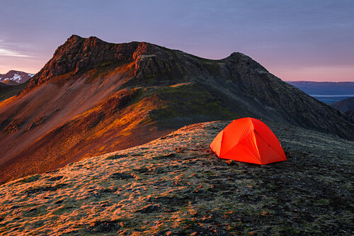 Orange tent on a mountain ridge in the warm morning light of the rising sun, Hofn, Vesturland, Iceland