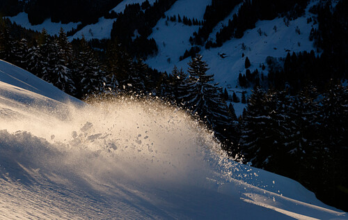 Powder turn of a skier enlightet by the warm evening light, Langer Grund, Tyrol, Austria